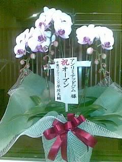 20081212(004)-001.jpg